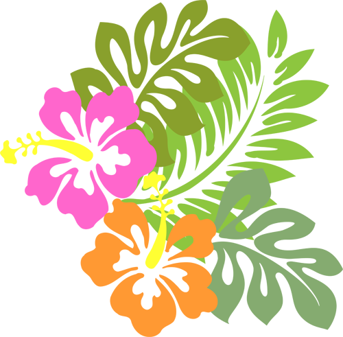 Image result for aloha