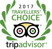 Travellers-Choice-Awards-2017-sm